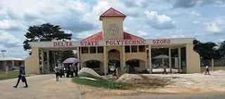 Delta Poly Ozoro